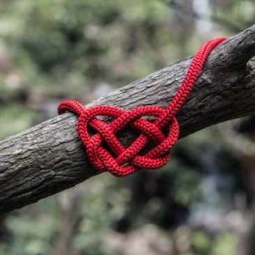 Heart made from a red rope